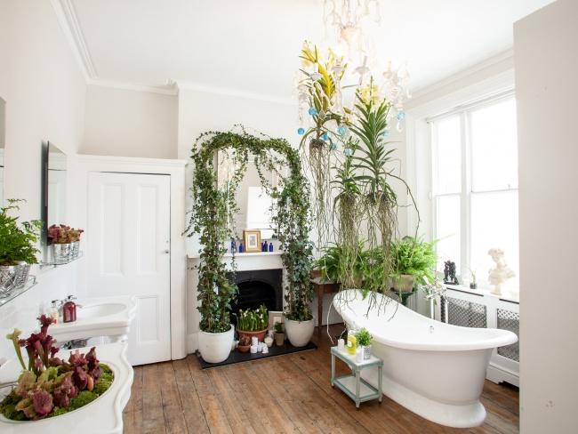 Một giàn cây trong nhà tắm sẽ biến phòng tắm của bạn trở nên tuyệt vời và bạn tha hồ thả mình trong dòng nước mát